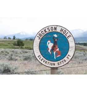 Jackson Hole, SPECIAL EDITION, Wyoming Art, Cowboy, Jackson Wyoming, Bucking Horse and Rider, Barnwood Sign, Salvaged Wood Art